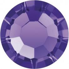 Maxima Rose ss10 Purple Velvet F